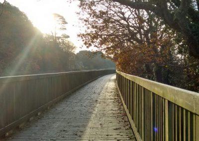 exe-trail-boardwalk