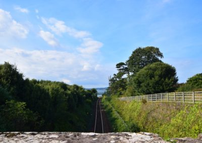 train-line-view